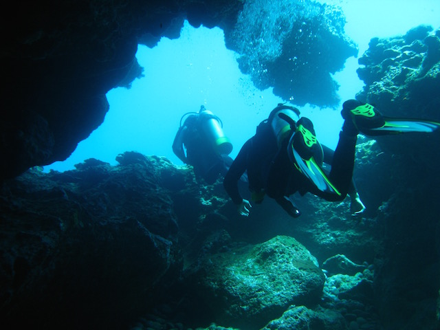 Diving on Lord Howe Island