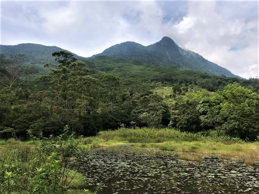 Rugged mountains in the Central Highlands, a World Heritage Site in Sri Lanka