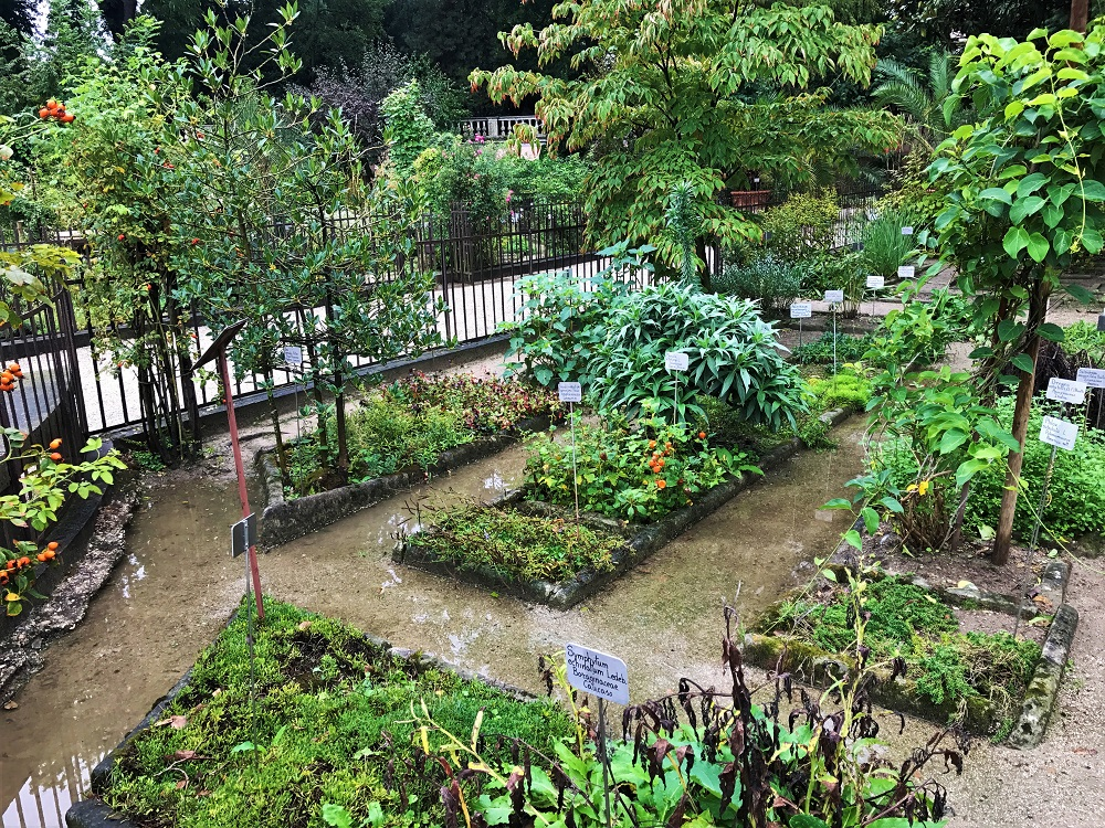 Padua Botanic Gardens World Heritage Site