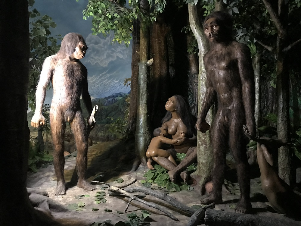 World Heritage Sites Indonesia: Sangiran Early Man Site